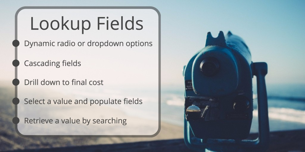 WordPress lookup fields