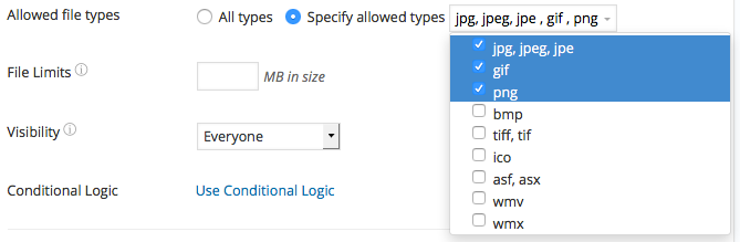 WordPress File Upload Form allowed file types