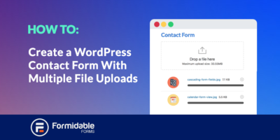create a wordpress form with multiple file uploads