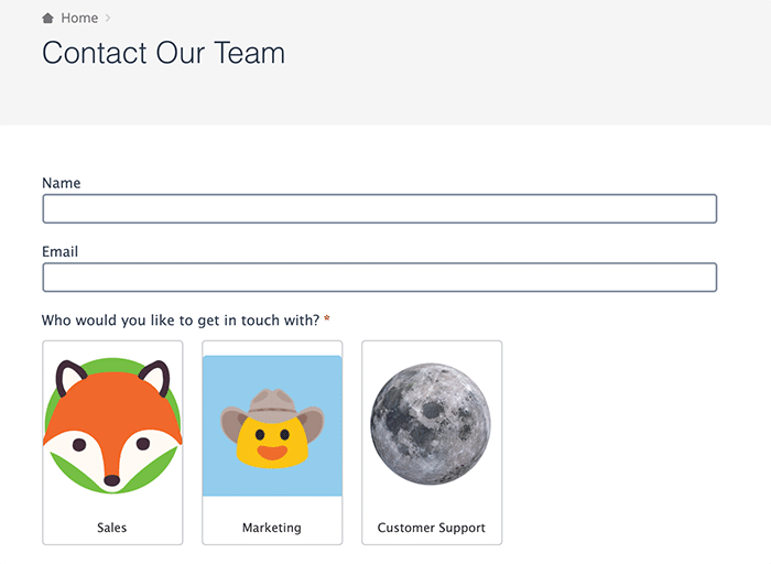 your team scheduling form