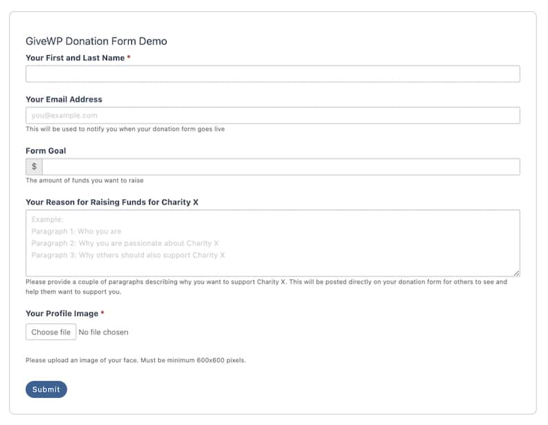 Formidable GiveWP donation form template