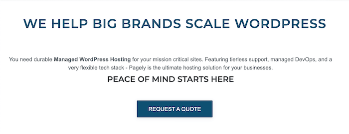 The home page for Pagely, a managed WordPress hosting provider.