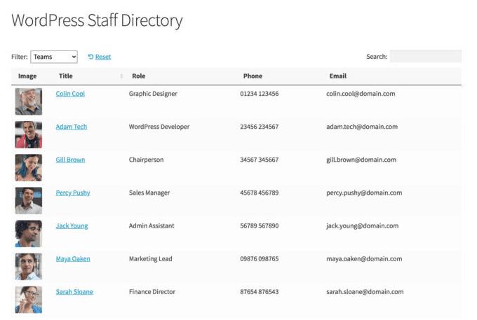 staff directory built with wordpress custom application builder
