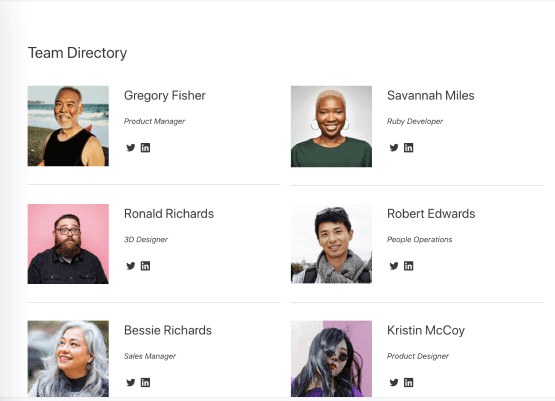 team directory built with the wordpress custom application builder