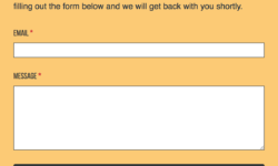 Yellow and black contact form