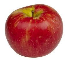 Fresh Fall Apple